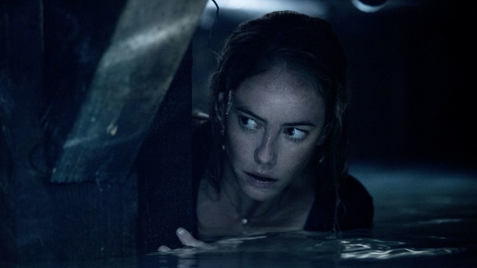crawl-movie-review